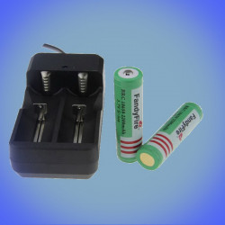 110-240V charger 2x 18650 cells with two Li-ion cells
