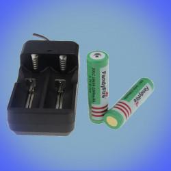110-240V Ladegerät für 2 18650 Zellen mit zwei Li-Ionen-Zellen