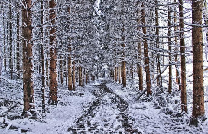 Chemin glissant par la pluie et la neige
